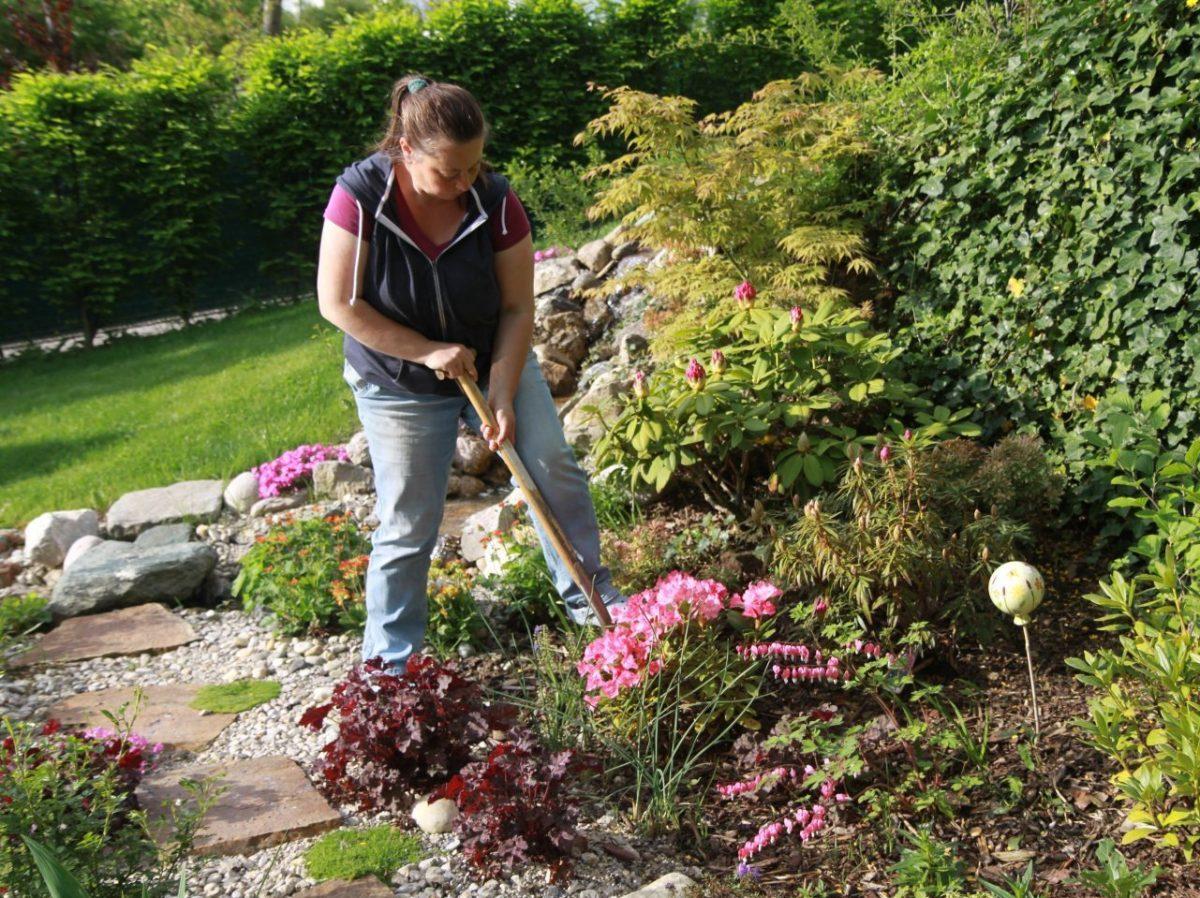 Gartengestaltung Libelle - Isabella Pfenning - Gartengestaltungs-Projekt Schafberg - Gestaltungsprozess